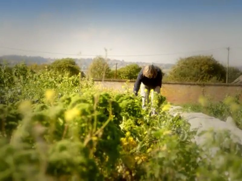 Coleshill Organics as seen on Mary Berry's Foolproof Cooking