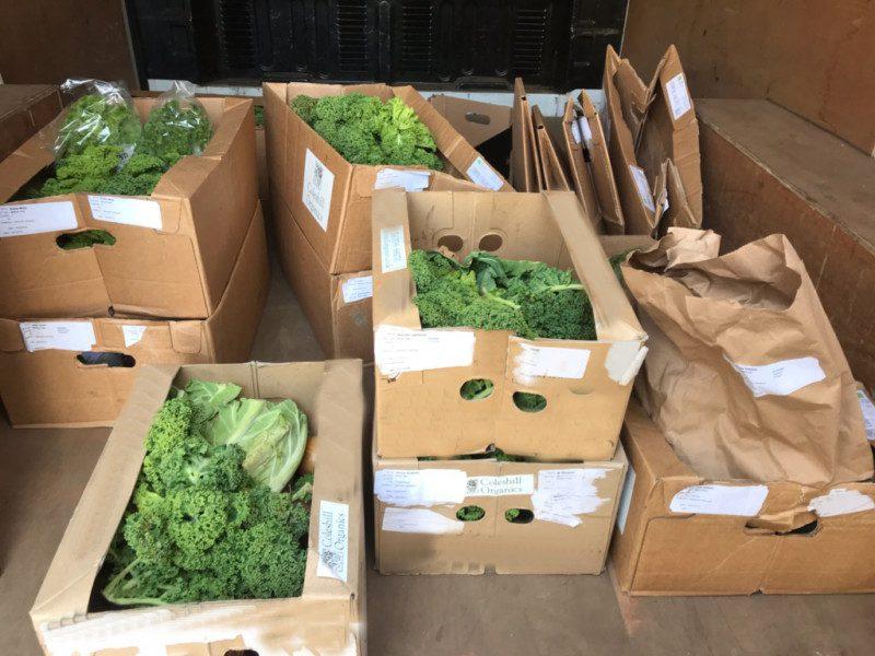 A local organic veg box scheme on the rise | Coleshill